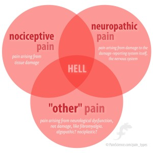 pain types, nociceptive pain, neuropathic pain, neurological dysfunction, hell