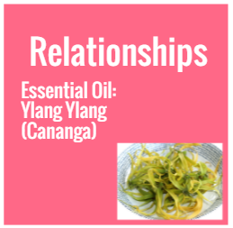 Strategic Vision Board, Strategic Vision, Strategic Planning, Vision Board, Vision boarding, yin and yang, relationships, essential oil, essential oils, ylang ylang, cananga