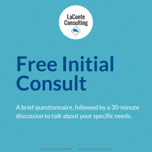 initial consult, initial consultation, strategic risk consult, strategic consultation, strategic analysis, needs analysis