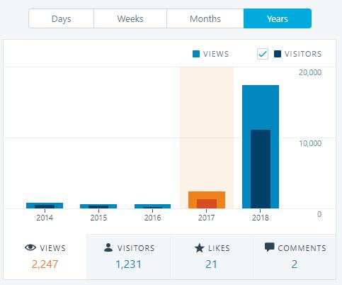 website views, website total views, views per year, website views per year, 2017 views, website analytics, SEO, strategic risk